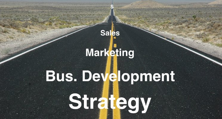 The Road to Building Commercial Excellence
